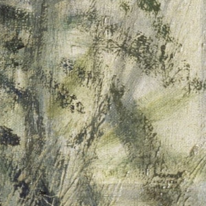 Detail of a painting by Monet